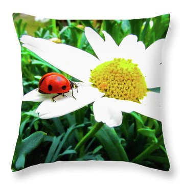 Daisy Flower And Ladybug Throw Pillow