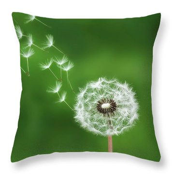 Throw Pillow featuring the photograph Dandelion by Bess Hamiti