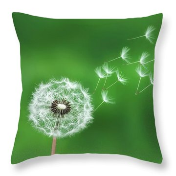 Dandelion Seeds Throw Pillow by Bess Hamiti