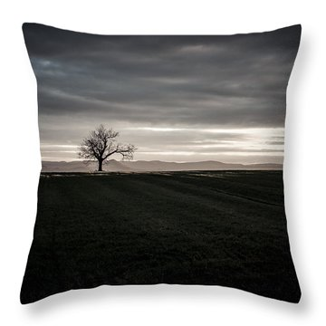 Dark And Light Throw Pillow by Miguel Winterpacht