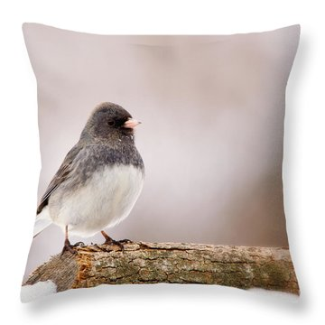 Dark-eyed Junco Throw Pillow
