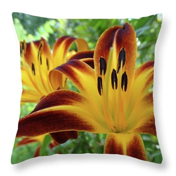 Daylilies At Daybreak Throw Pillow by Rebecca Overton