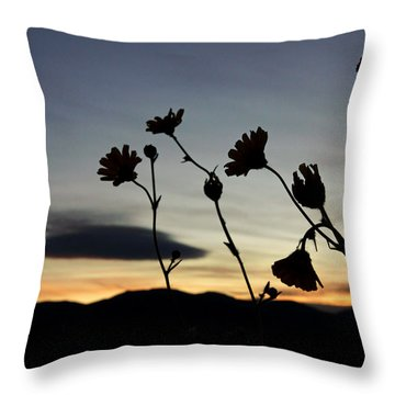 Death Valley Superbloom 104 Throw Pillow