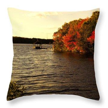 Deer Lake Park Throw Pillow