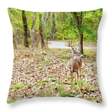 Deer Me, Are You In My Space? Throw Pillow