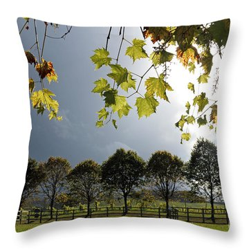 Denbies Vineyard Surrey Uk Throw Pillow