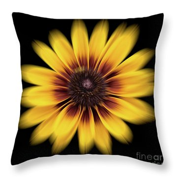 Throw Pillow featuring the photograph Denver Daisy by Ann Jacobson