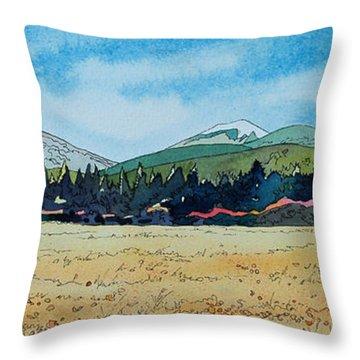 Deschutes River View Throw Pillow