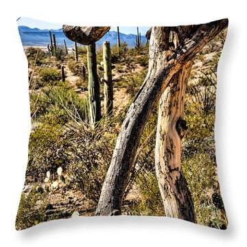 Desert Landscape Throw Pillow by Lawrence Burry