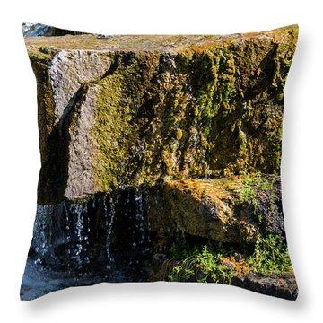 Desert Waterfall 2 Throw Pillow