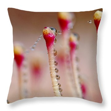 Dew Drops In A Row... Throw Pillow