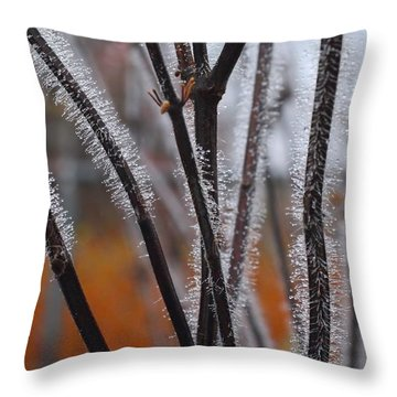 Dewdrops Throw Pillow by Kathryn Meyer