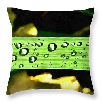 Dewdrops On A Leaf Of Yellow Iris Throw Pillow