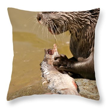 Dinner Time Throw Pillow by Scott Carruthers