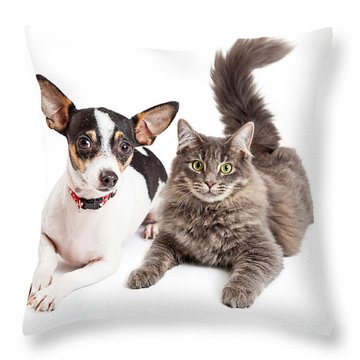 Dog And Cat Laying Together Looking Forward Throw Pillow