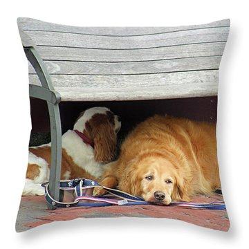 Dog Daze Throw Pillow