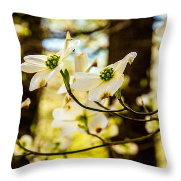 Dogwood Day Afternoon Throw Pillow