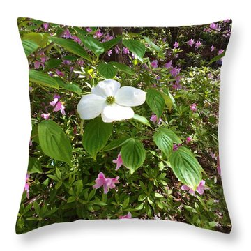 Dogwood Throw Pillow by Kay Gilley