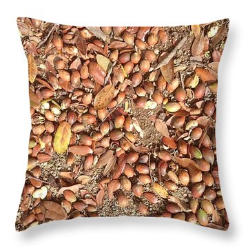 Donguri Means Acorn  Throw Pillow