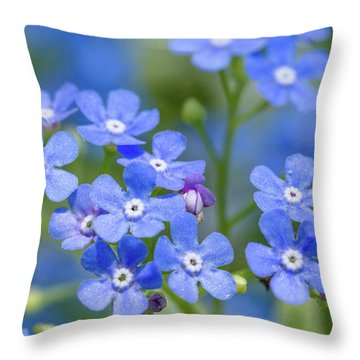 Don't Forget Throw Pillow