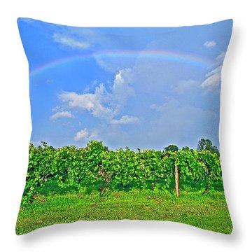 Double Rainbow Vineyard, Smith Mountain Lake Throw Pillow