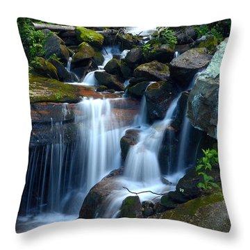 Down Stream Throw Pillow