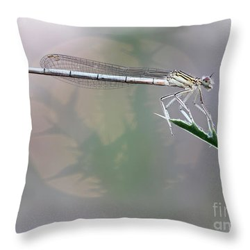 Dragonfly On Leaf Throw Pillow by Michal Boubin