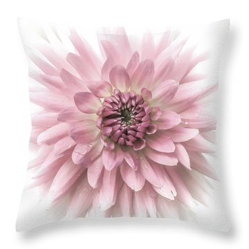 Throw Pillow featuring the photograph Dreamy Dahlia by Julie Palencia
