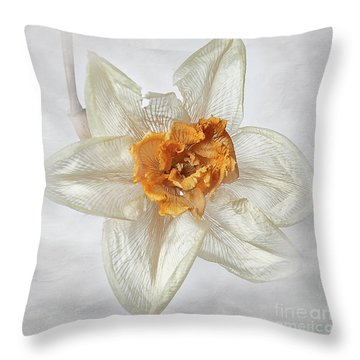 Dried Narcissus Throw Pillow