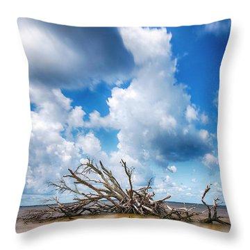 Throw Pillow featuring the photograph Driftwood Sky by Alan Raasch