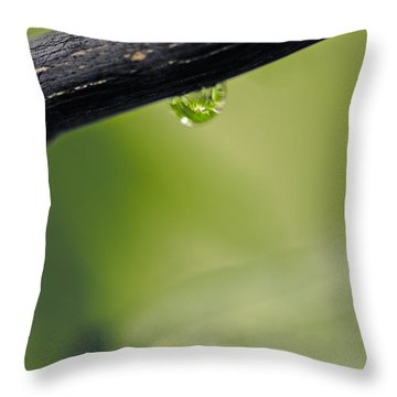 Throw Pillow featuring the photograph Droplet by Cendrine Marrouat