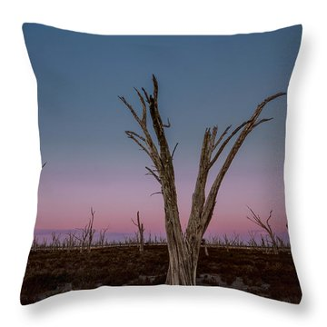 Throw Pillow featuring the photograph Dusk At Dumbleyung Lake by Julian Cook