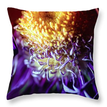 Dying Purple Chrysanthemum Flower Background Throw Pillow