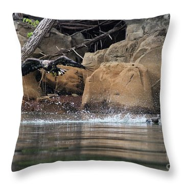 Throw Pillow featuring the photograph Eagle Attack II by Douglas Stucky