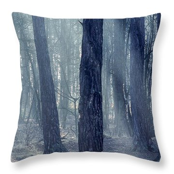 Good Morning World Throw Pillow