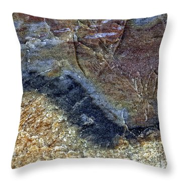 Earth Portrait 000-205 Throw Pillow