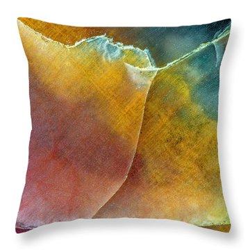 Earth Portrait 001 Throw Pillow