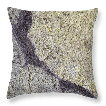 Earth Portrait 009 Throw Pillow