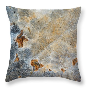 Earth Portrait 286 Throw Pillow
