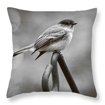 Throw Pillow featuring the photograph Eastern Phoebe by Robert L Jackson
