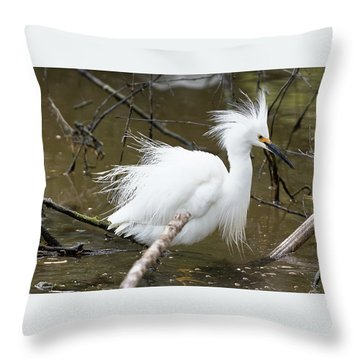 Egret Bath Throw Pillow