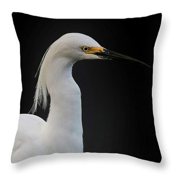 Egret Throw Pillow by Cyndy Doty