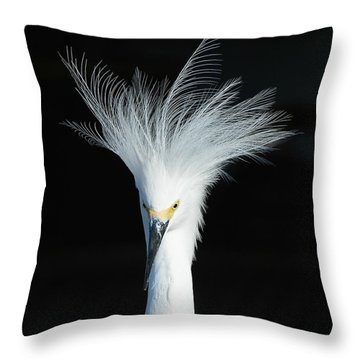 Throw Pillow featuring the photograph Electrifying by Fraida Gutovich