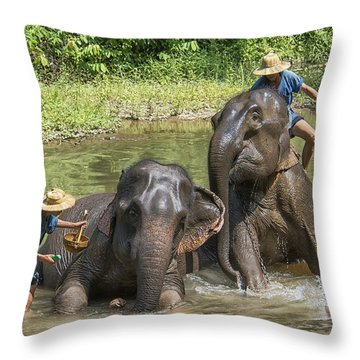 Elephant Bath Throw Pillow by Wade Aiken