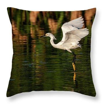 En Pointe Throw Pillow by Cyndy Doty