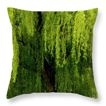 Enchanting Weeping Willow Tree  Throw Pillow