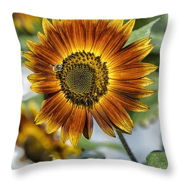 End Of Sunflower Season Throw Pillow