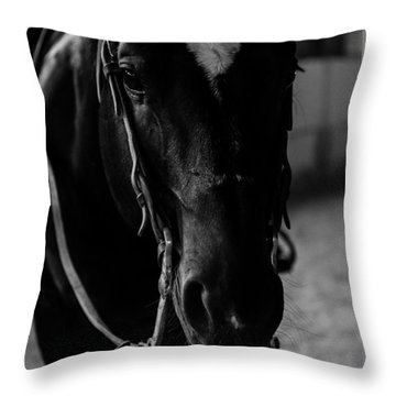 Equine Smile Throw Pillow