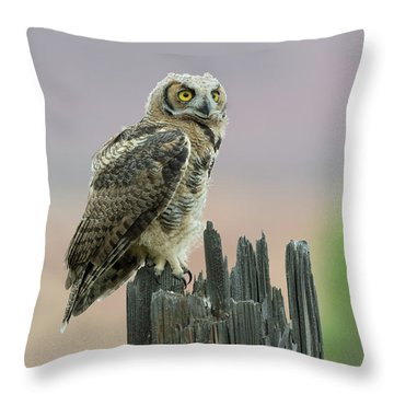 Ethereal Throw Pillow by Scott Warner