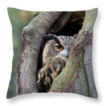 Eurasian Eagle-owl Bubo Bubo Looking Throw Pillow by Rob Reijnen